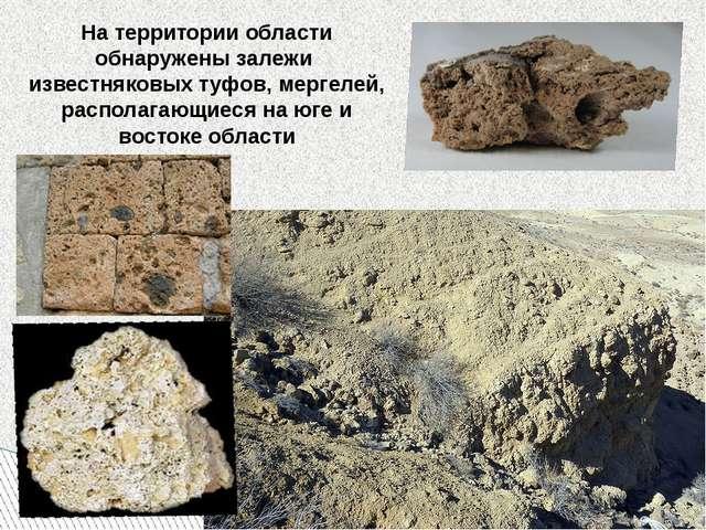 На территории области обнаружены залежи известняковых туфов, мергелей, распол...