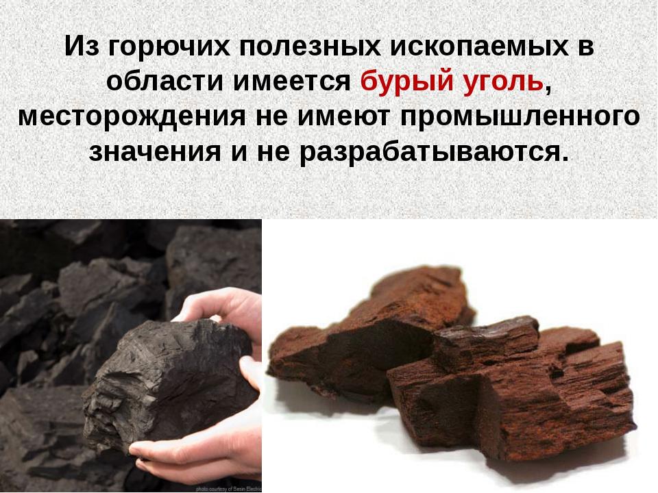 Из горючих полезных ископаемых в области имеется бурый уголь, месторождения н...