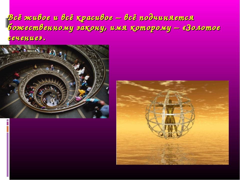 Всё живое и всё красивое – всё подчиняется божественному закону, имя которому...