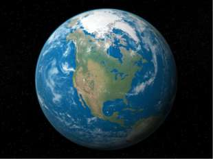 Леса, которые на поверхности Земли были бесконечными, можно окинуть одним взг