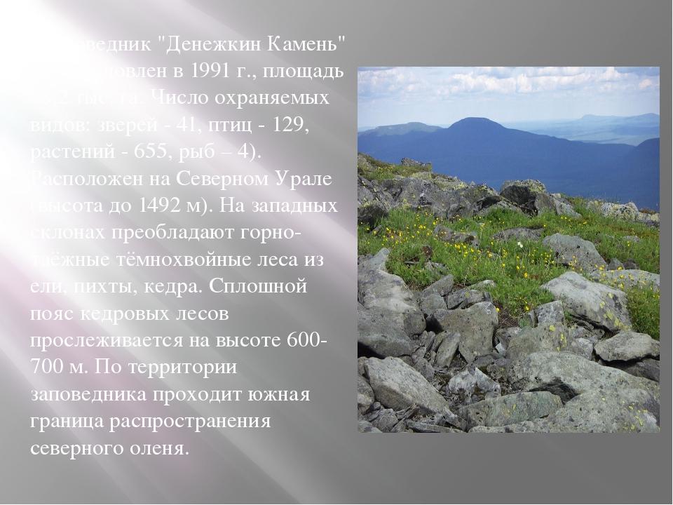 """. Заповедник """"Денежкин Камень"""" (Восстановлен в 1991 г., площадь 78,2 тыс. га...."""