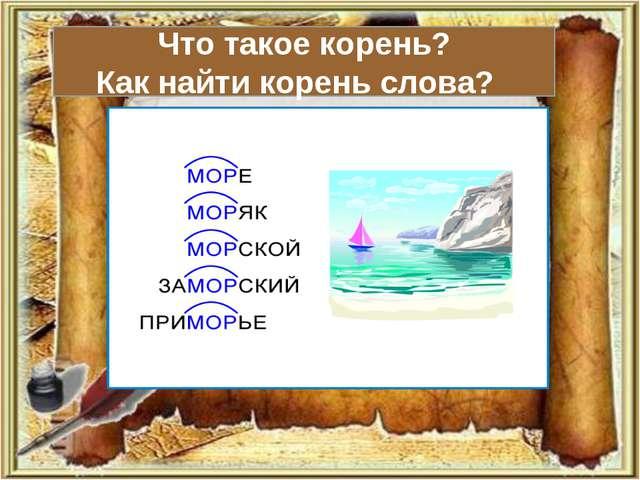 Что такое корень? Как найти корень слова?