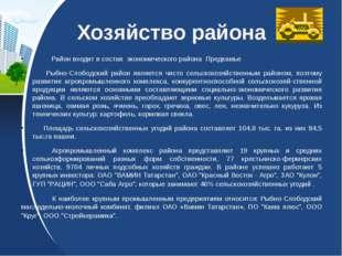 Хозяйство района Район входит в состав экономического района Предкамье Рыбно-