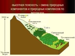 -высотная поясность – смена природных компонентов и природных комплексов по в