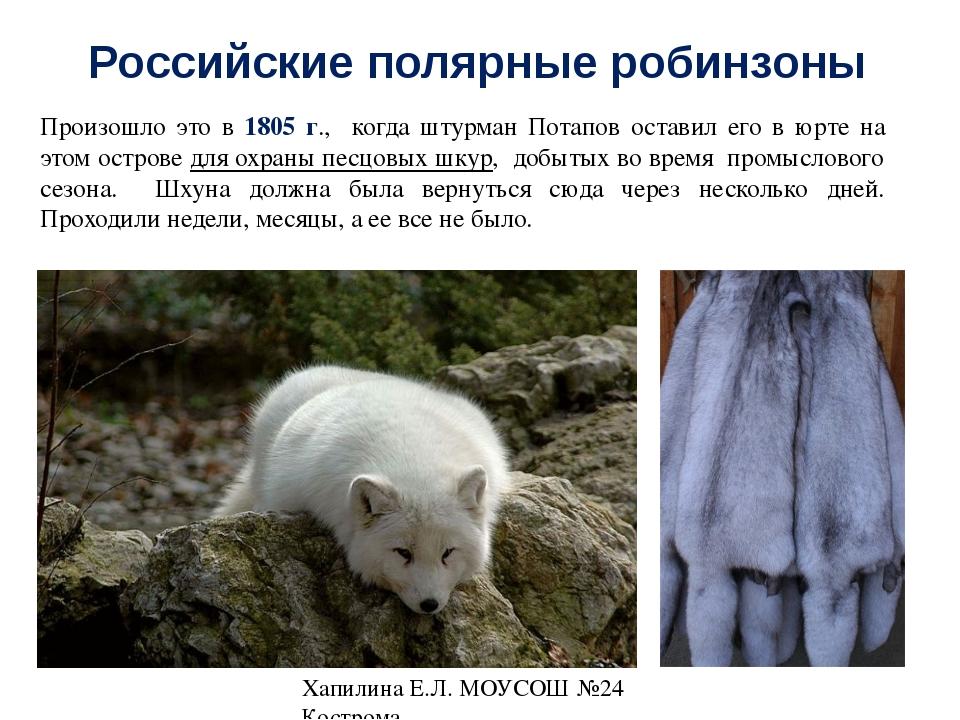Российские полярные робинзоны Порыбачив, они ночью пустились в обратный путь....