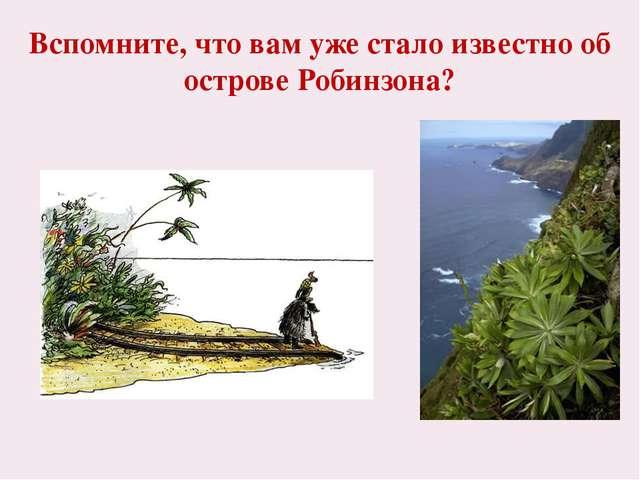 Вспомните, что вам уже стало известно об острове Робинзона? Остров покрыт гус...