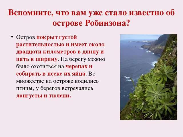 Реальный остров Робинзона Крузо Хапилина Е.Л. МОУ СОШ № 24 Кострома