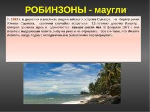 """Остров Суматра Колышко А. 11 """"А"""", Хапилина Е.Л."""