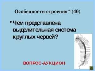 Чем представлена выделительная система круглых червей? Особенности строения*