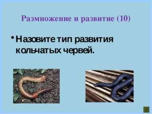 Размножение и развитие (10) Назовите тип развития кольчатых червей.