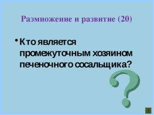 Кто является промежуточным хозяином печеночного сосальщика? Размножение и раз