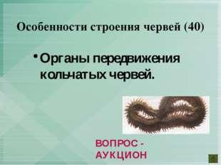 Органы передвижения кольчатых червей. Особенности строения червей (40) ВОПРОС