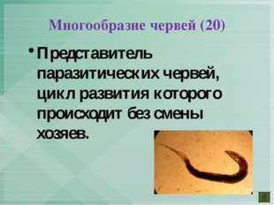 Представитель паразитических червей, цикл развития которого происходит без см