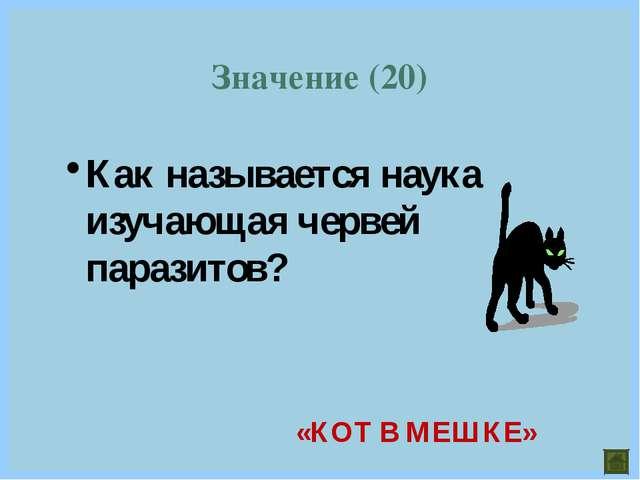 Как называется наука изучающая червей паразитов? Значение (20) «КОТ В МЕШКЕ»