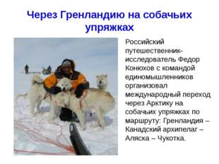 Через Гренландию на собачьих упряжках Хапилина Е.Л. МОУ СОШ № 24 Кострома Рос