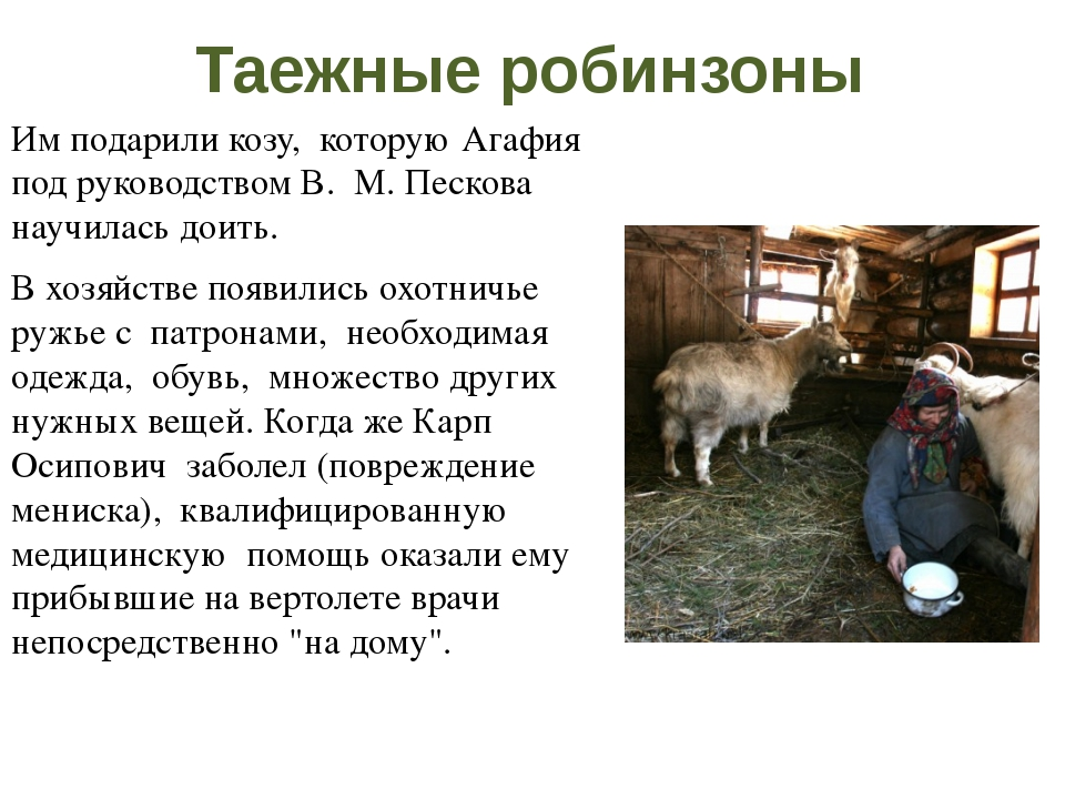 Таежные робинзоны После публикации в газете Лыковых нашли их родственники - Т...