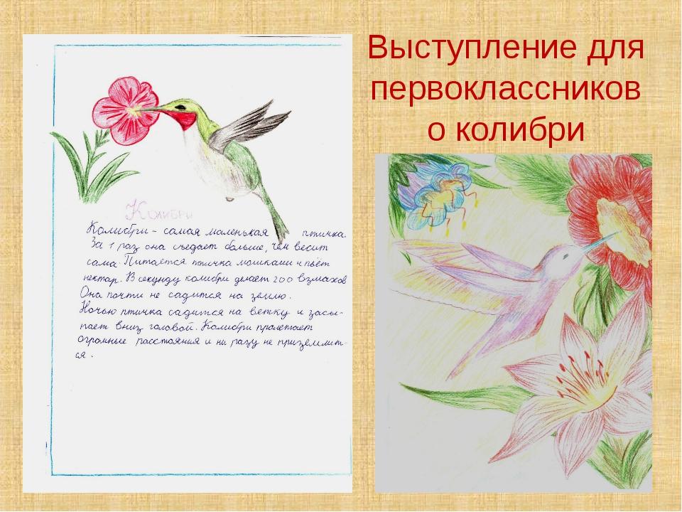 Выступление для первоклассников о колибри
