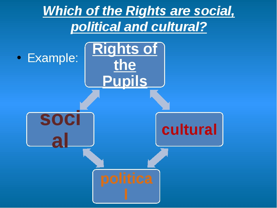 Which of the Rights are social, political and cultural? Example: