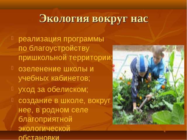 Экология вокруг нас реализация программы по благоустройству пришкольной терри...