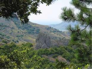 Горы в Ивано-Франковско