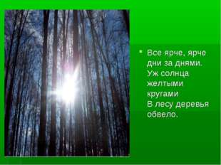 Все ярче, ярче дни за днями. Уж солнца желтыми кругами В лесу деревья обвело.