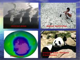 вымирание видов, занесённых В Красные книги кислотные дожди озоновые дыры деф