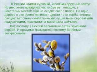 В России климат суровый, и пальмы здесь не растут. Ко дню этого праздника ча