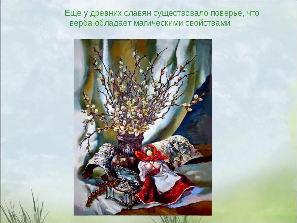 Ещё у древних славян существовало поверье, что верба обладает магическими св...