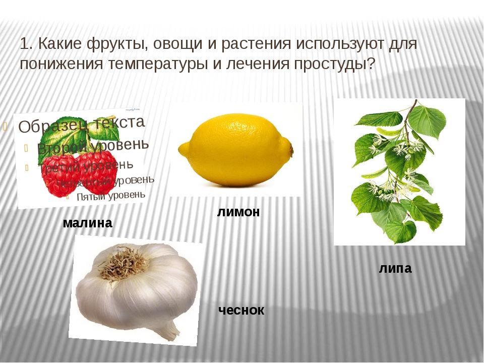 1. Какие фрукты, овощи и растения используют для понижения температуры и лече...