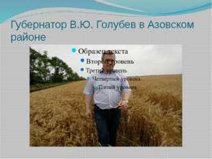 Губернатор В.Ю. Голубев в Азовском районе
