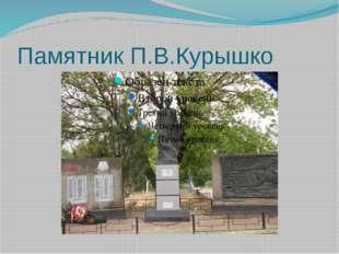 Памятник П.В.Курышко