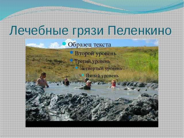 Лечебные грязи Пеленкино