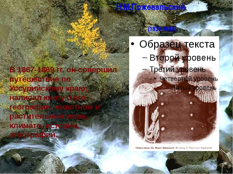 Н.М.Пржевальский (1839-1888) В 1867-1869 гг. он совершил путешествие по Уссур...