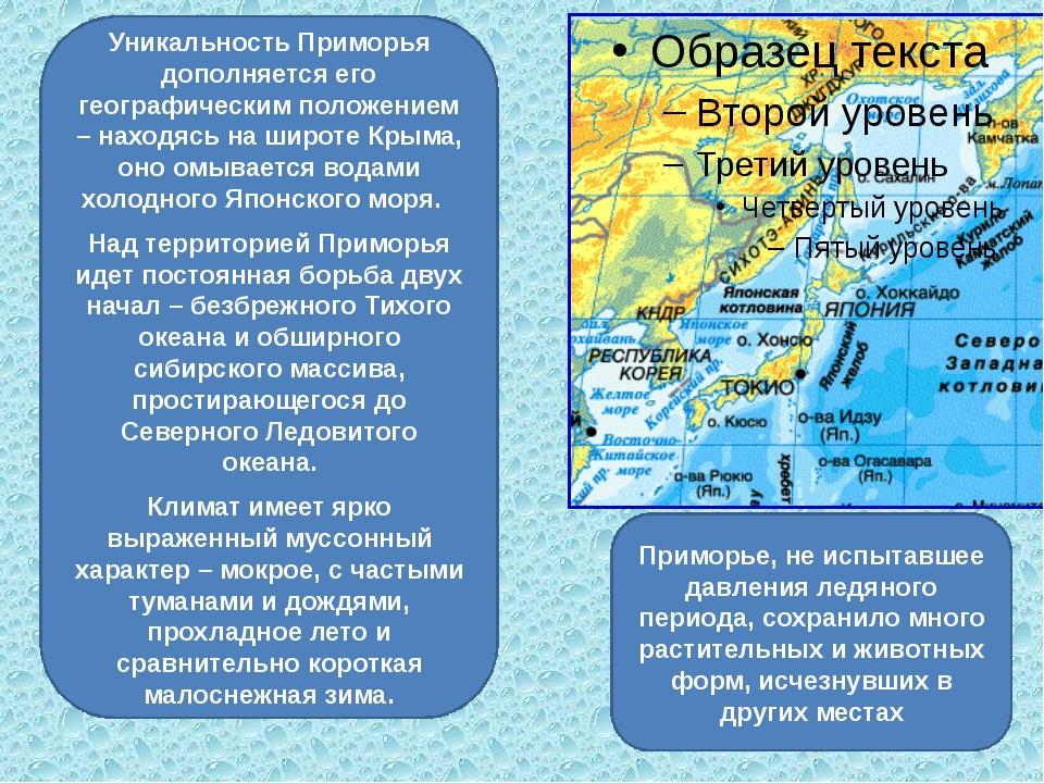 Уникальность Приморья дополняется его географическим положением – находясь на...