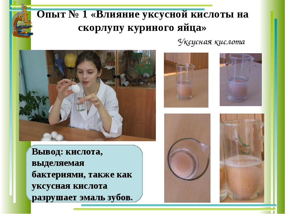 Опыт № 1 «Влияние уксусной кислоты на скорлупу куриного яйца» Вывод: кислота,...