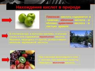 Нахождение кислот в природе Лимонная кислота содержится в лимонах, яблочная к