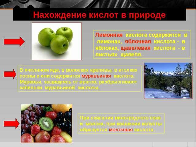 Нахождение кислот в природе Лимонная кислота содержится в лимонах, яблочная к...