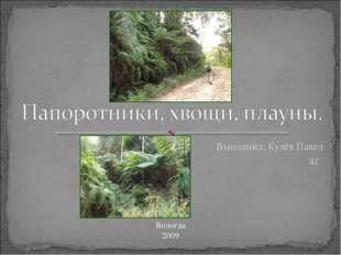 Выполнил: Кулёв Павел 4Г Вологда 2009