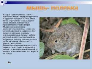 Каждый с детства знаком с этим животным: мышка нередко встречается и в русски