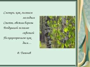 Смотри, как листьем молодым Стоят, овеяны березы Воздушной зеленью сквозной