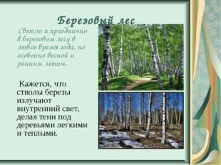 Березовый лес Светло и празднично в березовом лесу в любое время года, но осо