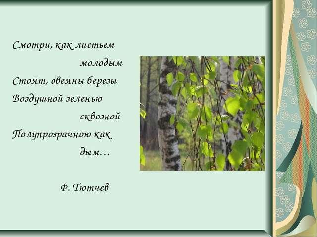 Смотри, как листьем молодым Стоят, овеяны березы Воздушной зеленью сквозной...