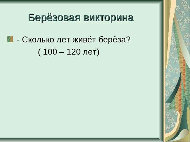 Берёзовая викторина - Сколько лет живёт берёза? ( 100 – 120 лет)