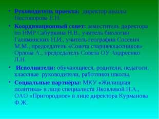Руководитель проекта: директор школы Несговорова Е.Н. Координационный совет: