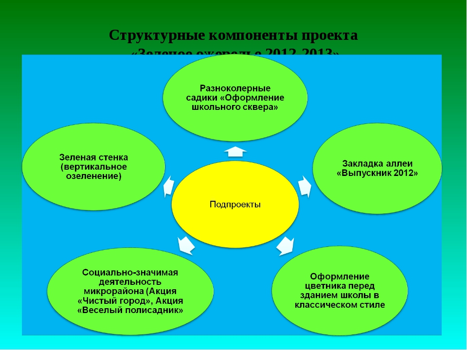 Структурные компоненты проекта «Зеленое ожерелье 2012-2013»