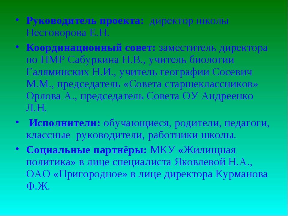 Руководитель проекта: директор школы Несговорова Е.Н. Координационный совет:...