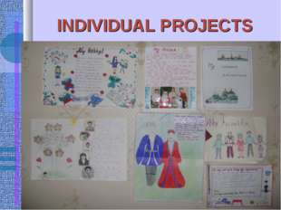 INDIVIDUAL PROJECTS