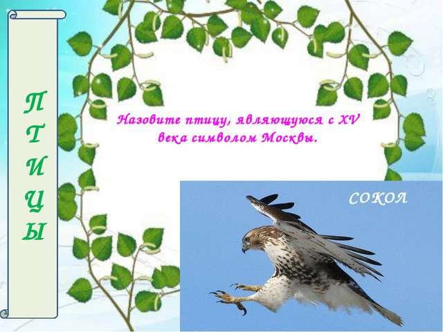 П Т И Ц Ы Назовите птицу, являющуюся с XV века символом Москвы. СОКОЛ