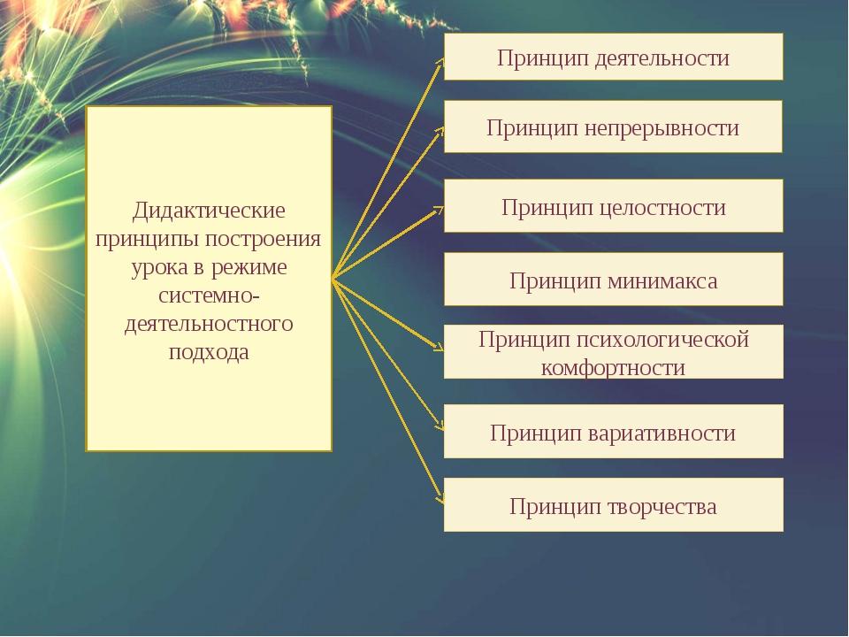 Дидактические принципы построения урока в режиме системно-деятельностного под...