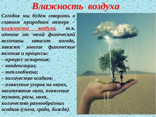 Сегодня мы будем говорить о главном природном актере – влажности воздуха, т.к...
